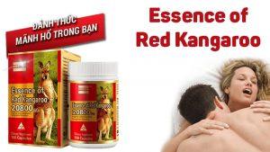 Thuốc Essence of Red Kangaroo có lừa đảo không? Giá bao nhiêu? Mua ở đâu? Có tốt không?