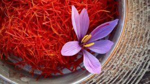 Review nhụy hoa nghệ tây saffron có thực sự tốt không? tác dụng là gì?