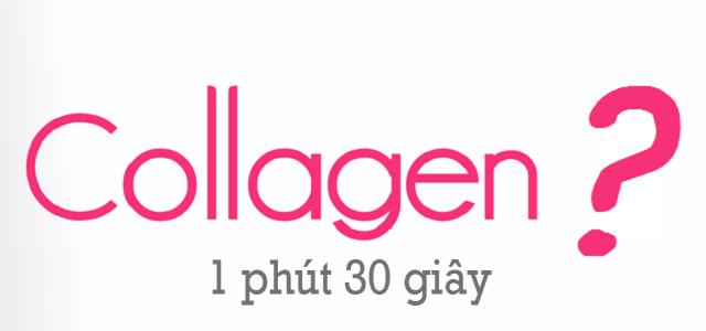 Collagen là thành phần quan trọng đối với cơ thể