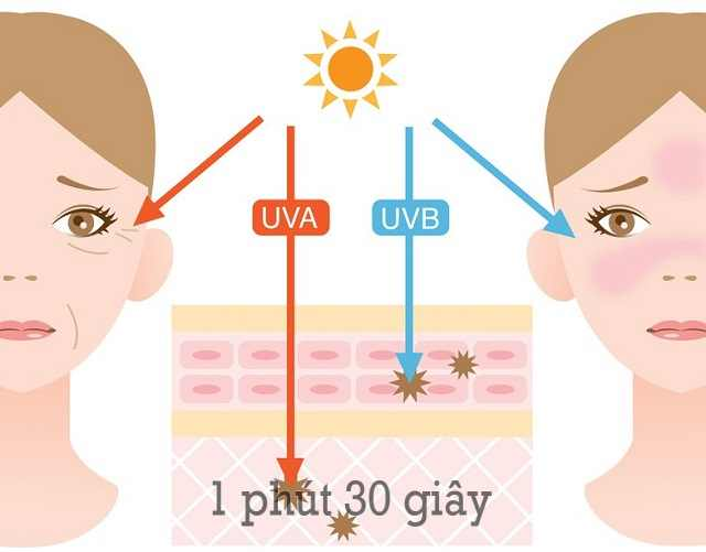 Các loại tia UV đều rất nguy hiểm với làn da của chúng ta