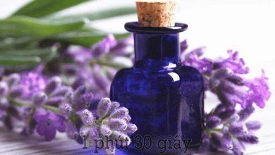 Photo of Review tinh dầu oải hương Lavender có tốt không? tác dụng gì? giá bao nhiêu? mua ở đâu?