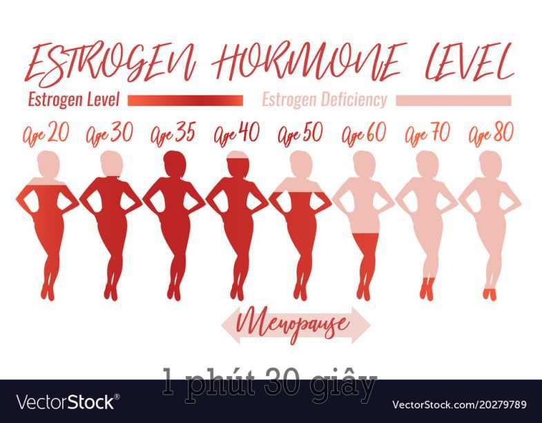 Photo of Estrogen là gì? có tác dụng gì với phụ nữ?
