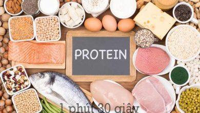 Photo of Protein là gì? vai trò của Protein có tác dụng gì?