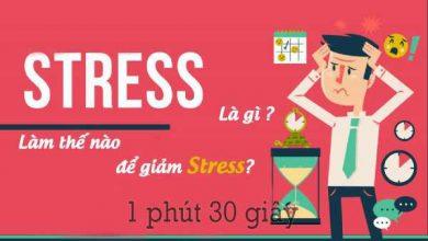 Photo of Bệnh stress là gì? nguyên nhân & dấu hiệu bạn bị stress nghiêm trọng