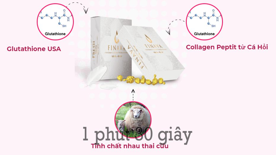 Photo of Review Finava có tốt không? giá bao nhiêu? mua ở đâu?