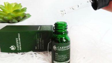 Photo of Review serum trị mụn Caryophy có tốt không giá bao nhiêu? Mua ở đâu?